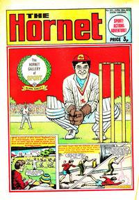 Cover Thumbnail for The Hornet (D.C. Thomson, 1963 series) #451