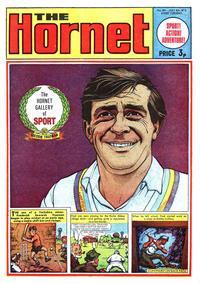 Cover Thumbnail for The Hornet (D.C. Thomson, 1963 series) #461