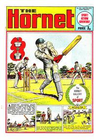 Cover Thumbnail for The Hornet (D.C. Thomson, 1963 series) #462