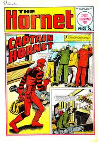 Cover Thumbnail for The Hornet (D.C. Thomson, 1963 series) #507
