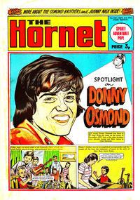 Cover Thumbnail for The Hornet (D.C. Thomson, 1963 series) #530