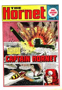 Cover Thumbnail for The Hornet (D.C. Thomson, 1963 series) #541
