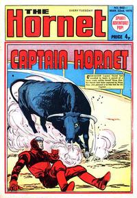 Cover Thumbnail for The Hornet (D.C. Thomson, 1963 series) #602