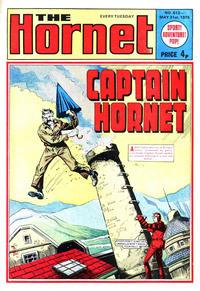 Cover Thumbnail for The Hornet (D.C. Thomson, 1963 series) #612