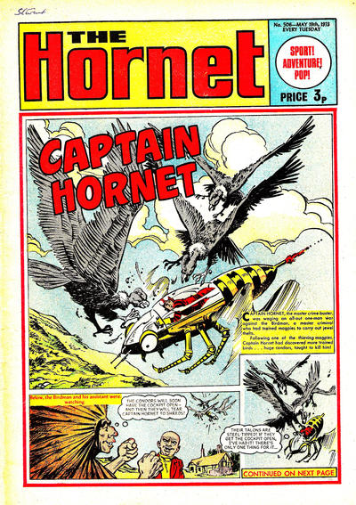 Cover for The Hornet (D.C. Thomson, 1963 series) #506