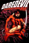 Cover for Daredevil Visionaries: Frank Miller (Marvel, 2000 series) #3