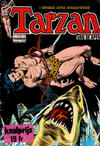 Cover for Tarzan Classics (Classics/Williams, 1965 series) #12236