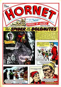 Cover Thumbnail for The Hornet (D.C. Thomson, 1963 series) #8