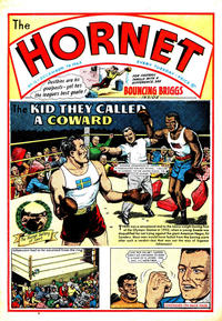 Cover Thumbnail for The Hornet (D.C. Thomson, 1963 series) #13