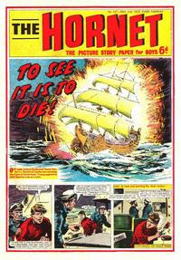 Cover Thumbnail for The Hornet (D.C. Thomson, 1963 series) #347