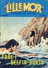 Cover for Lillemor (Serieforlaget / Se-Bladene / Stabenfeldt, 1969 series) #6/1975
