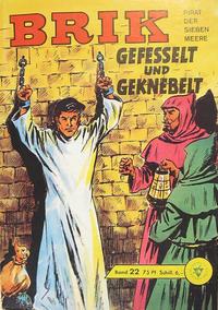 Cover Thumbnail for Brik (Lehning, 1962 series) #22