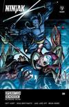 Cover for Ninjak (Valiant Entertainment, 2015 series) #12 [Cover A - Doug Braithwaite]
