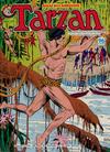 Cover for Edgar Rice Burroughs' Tarzan (K. G. Murray, 1980 series) #17