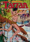 Cover for Edgar Rice Burroughs' Tarzan (K. G. Murray, 1980 series) #17