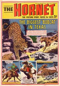 Cover Thumbnail for The Hornet (D.C. Thomson, 1963 series) #259