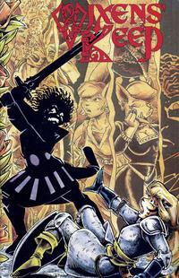 Cover Thumbnail for Vixens' Keep (MU Press, 1995 series)