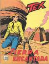 Cover for Tex Gigante (Sergio Bonelli Editore, 1958 series) #102