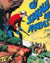 Cover for Tex (Sergio Bonelli Editore, 1958 series) #17