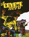 Cover for Tex (Sergio Bonelli Editore, 1958 series) #29