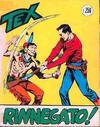 Cover for Tex (Sergio Bonelli Editore, 1958 series) #41