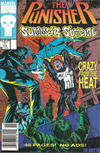 Cover for The Punisher Summer Special (Marvel, 1991 series) #1 [Newsstand]