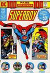 Cover for 100-Page Super Spectacular (DC, 1973 series) #DC-15
