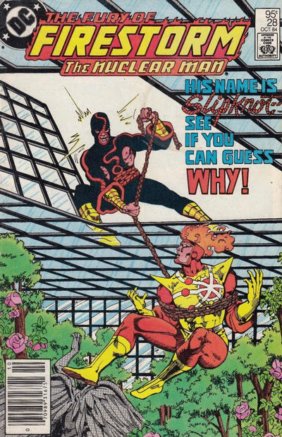 Cover for The Fury of Firestorm (DC, 1982 series) #28 [Newsstand]