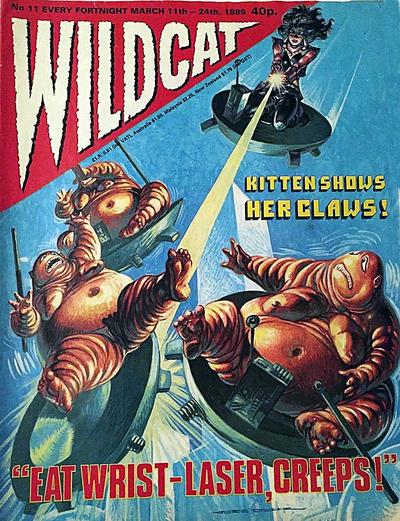 Cover for Wildcat (Fleetway Publications, 1988 series) #11