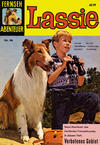 Cover for Fernseh Abenteuer (Tessloff, 1960 series) #46