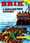Cover for Brik (Lehning, 1962 series) #26