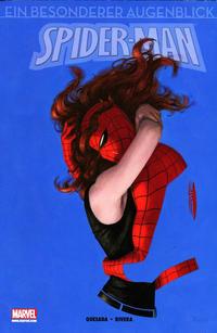 Cover Thumbnail for Spider-Man - Ein besonderer Augenblick (Panini Deutschland, 2011 series)