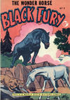Cover for Black Fury (World Distributors, 1955 series) #3