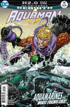 Cover for Aquaman (DC, 2016 series) #19 [Brad Walker / Andrew Hennessy Cover]