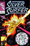 Cover for Silver Surfer (Play Press, 1989 series) #12