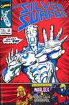 Cover for Silver Surfer (Play Press, 1989 series) #36