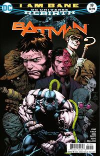 Cover Thumbnail for Batman (DC, 2016 series) #19 [David Finch / Danny Miki Cover]
