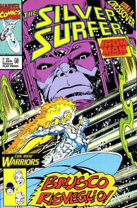Cover Thumbnail for Silver Surfer (Play Press, 1989 series) #43