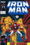 Cover for Iron Man (Play Press, 1989 series) #13