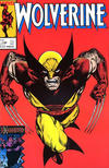 Cover for Wolverine (Play Press, 1989 series) #17