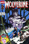 Cover for Wolverine (Play Press, 1989 series) #25