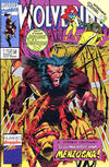 Cover for Wolverine (Play Press, 1989 series) #44/45