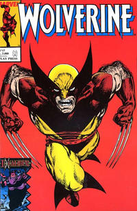 Cover Thumbnail for Wolverine (Play Press, 1989 series) #17