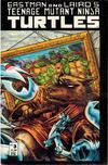 Cover for Teenage Mutant Ninja Turtles (Mirage, 1984 series) #3 [Second Printing]