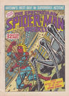 Cover for The Spectacular Spider-Man Weekly (Marvel UK, 1979 series) #347