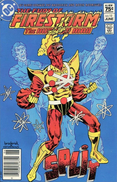 Cover for The Fury of Firestorm (DC, 1982 series) #13 [Direct-Sales]