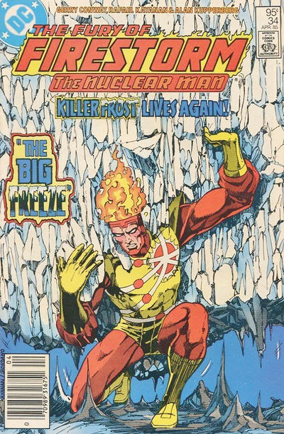 Cover for The Fury of Firestorm (DC, 1982 series) #34 [Direct Sales]