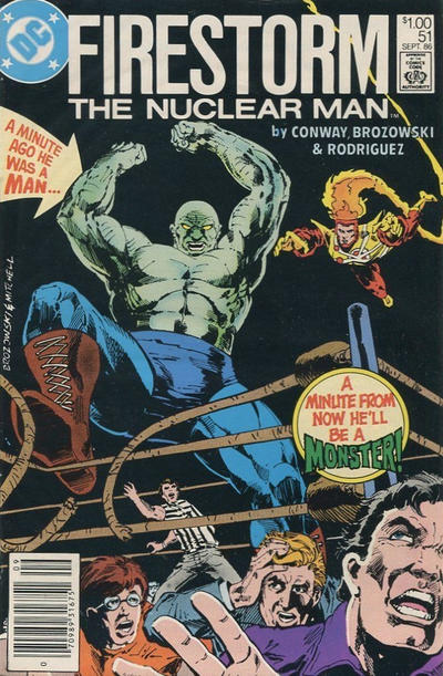 Cover for The Fury of Firestorm (DC, 1982 series) #51 [Direct Sales]