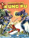 Cover for Shang-Chi Maestro del Kung Fu (Editoriale Corno, 1975 series) #8