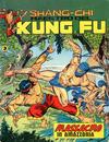 Cover for Shang-Chi Maestro del Kung Fu (Editoriale Corno, 1975 series) #11